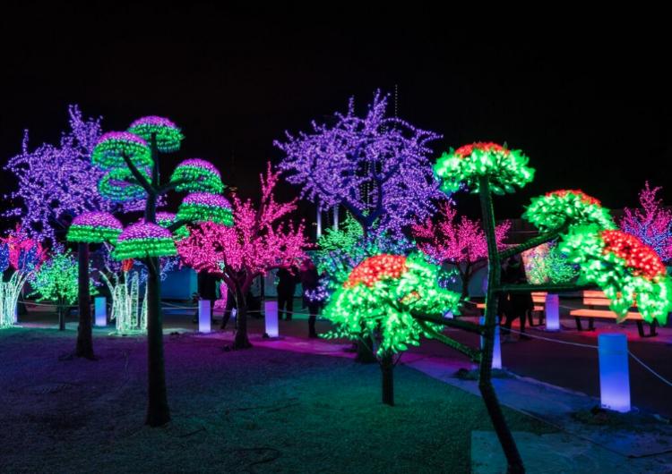 El próximo mes llegará a Toronto este festival navideño de luces LED