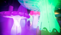 El Toronto Light Festival regresa a la ciudad